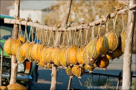 Динний базар біля Беруні