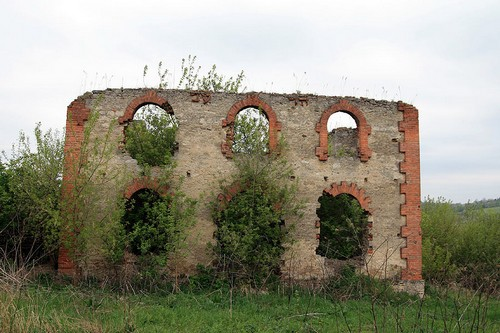 Вінничина, Молдова