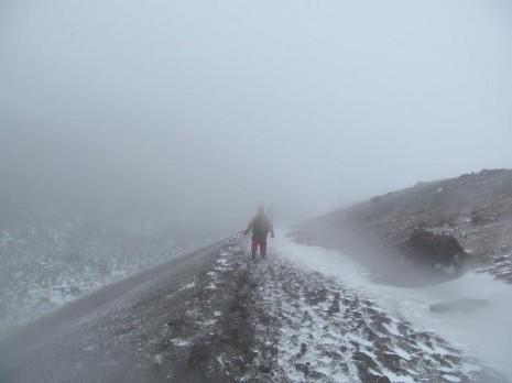 Підйом на вулкан Котопаксі. Еквадор