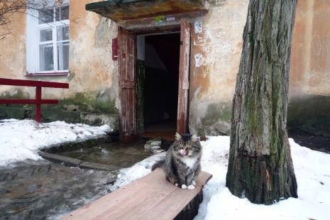 Біля одного з найстарших будинків